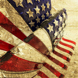 1385 Grungy American Flag 3D Photography Backdrop - Backdrop Outlet