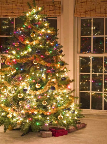 145 Christmas Tree Window Backdrop - Backdrop Outlet