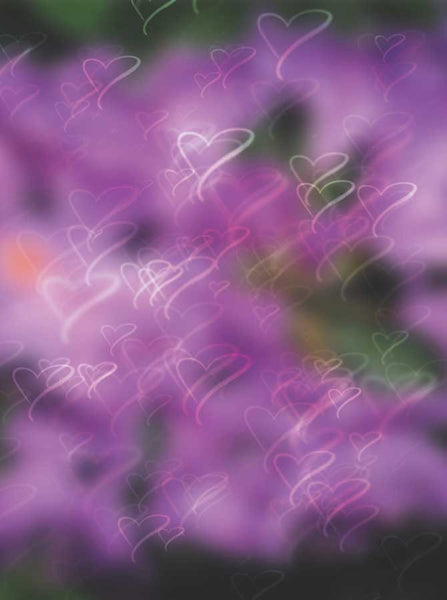 Purple Hearts Bokeh Backdrop - 1460 - Backdrop Outlet