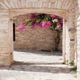 1854 Architecture Flowering Arch Backdrop - Backdrop Outlet