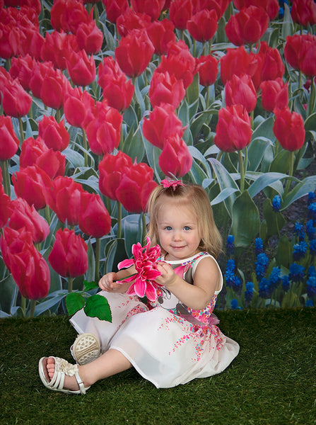 2039 Tulip Flowers Backdrop - Backdrop Outlet