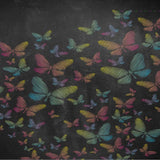 2205 Chalkboard Butterfly Colors Backdrop - Backdrop Outlet