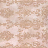 Damask Ashton Tan Backdrop - 2287 - Backdrop Outlet