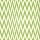 2295 Printed Green Stripes Backdrop - Backdrop Outlet