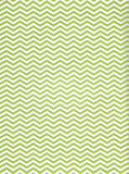 Printed Green Stripes Backdrop - 2295 - Backdrop Outlet