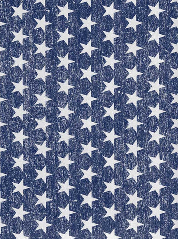 2376 Denim Stars Backdrop - Backdrop Outlet