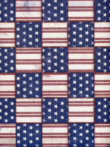 2383 Flag Backdrop - Backdrop Outlet