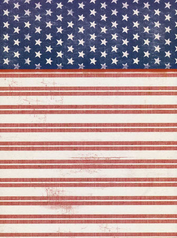 2394 Stars and Stripes Backdrop - Backdrop Outlet