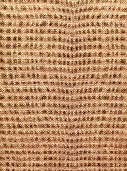 Abstract Burlap Backdrop - 2413 - Backdrop Outlet