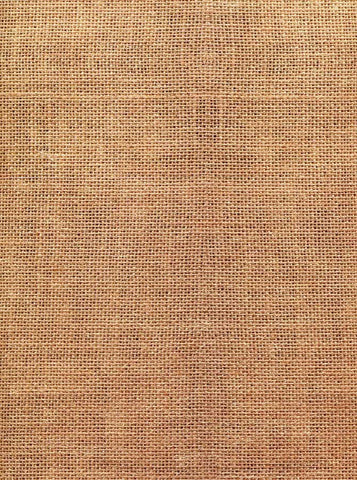 2413 Abstract Burlap Backdrop - Backdrop Outlet