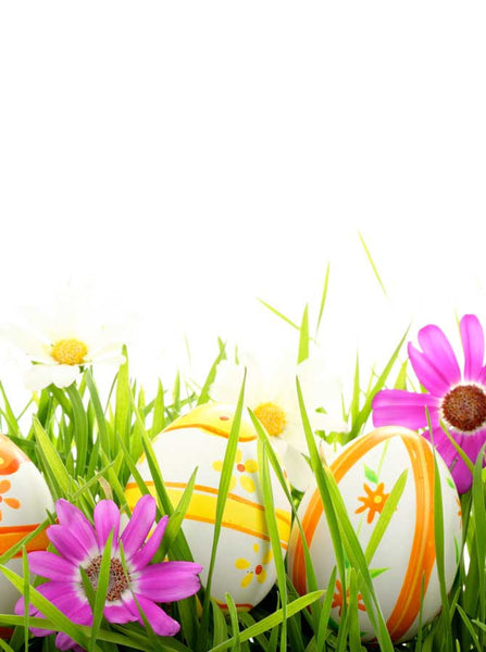 Easter Hidden Eggs Backdrop - 2727 - Backdrop Outlet