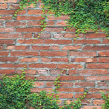 2847 Red Ivy Brick Backdrop - Backdrop Outlet