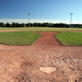 314 Baseball Field Backdrop - Backdrop Outlet