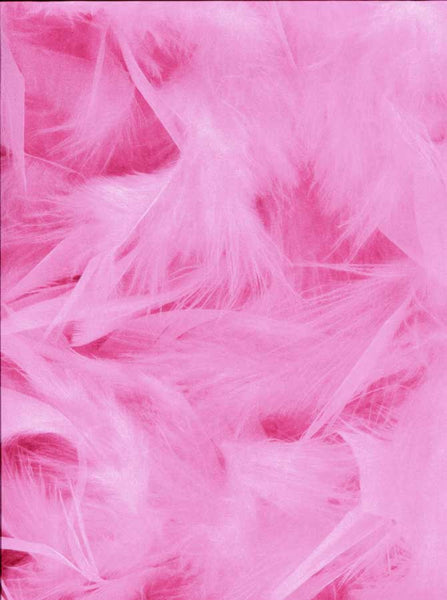 Printed Pink Feathers Backdrop - 3167 - Backdrop Outlet