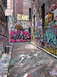 Graffiti Alley Backdrop - 344 - Backdrop Outlet