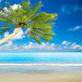 3488 Beach Palm Tree Backdrop - Backdrop Outlet