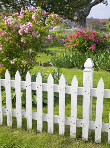 454 Printed White Picket Fence Backdrop - Backdrop Outlet