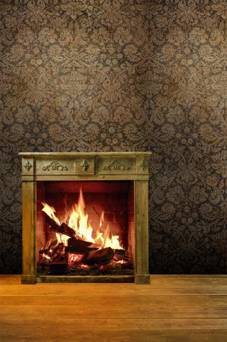4658 Rustic Wood Burning Fireplace Vintage Backdrop