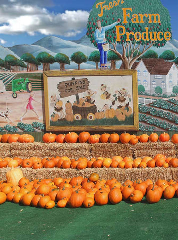 Pumpkin Farm patch Produce Photo Backdrop - 4660 - Backdrop Outlet