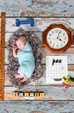 483 Washed Wood Distressed Backdrop