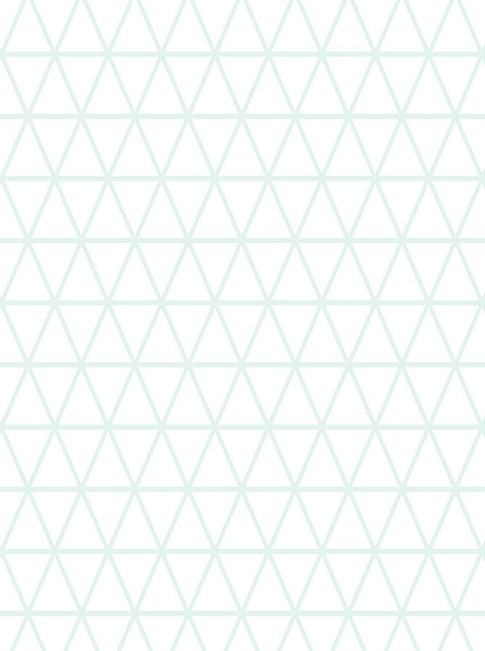 6169 Light Mint Green Triangle Pattern Printed Backdrop - Backdrop Outlet
