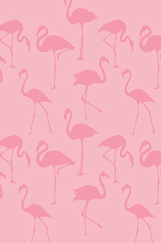 6236 Pink Flamingo Pattern Printed Backdrop - Backdrop Outlet
