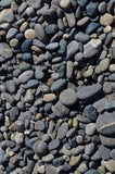 6251 Loose Stone Beach Pebbles Backdrop