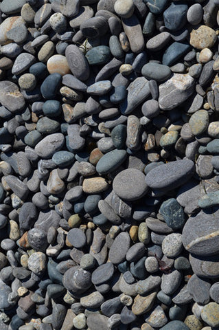 6251 Loose Stone Beach Pebbles Backdrop - Backdrop Outlet