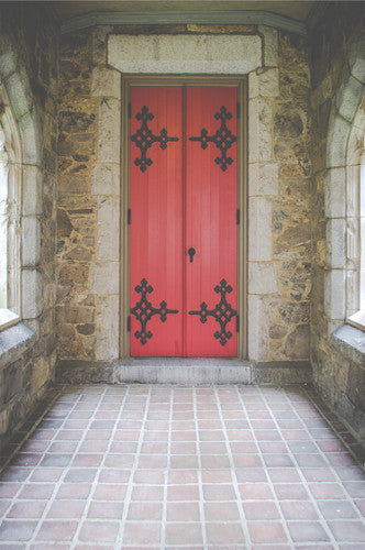 Interior Stone Medieval Red Door Backdrop - 6252 - Backdrop Outlet