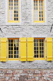 6260 Canary Yellow Shutter Window Stone Floor Backdrop