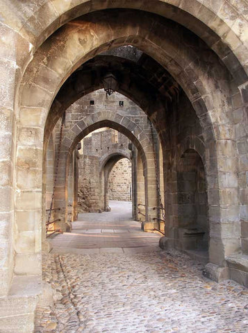 6317 Architecture Stone Alley Path Archway Backdrop - Backdrop Outlet