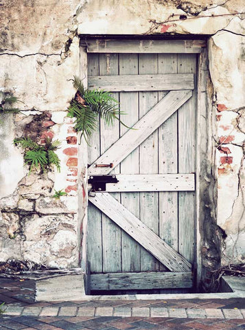 6322 Rustic Wooden Door Plants Brick Wall Backdrop - Backdrop Outlet