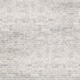 Gray Wash Brick Wall Printed Backdrop - 6379 - Backdrop Outlet
