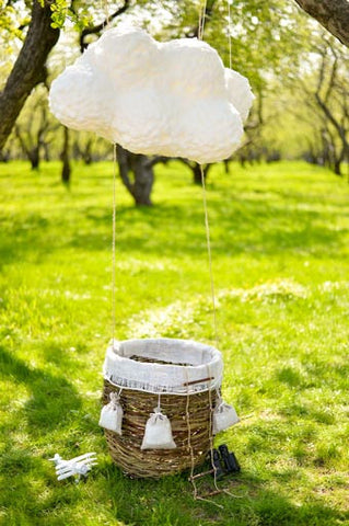 6719 Mini Hot Air Balloon In Field Printed Backdrop - Backdrop Outlet