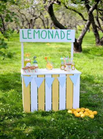 6720 Lemonade Stand In The Field Printed Backdrop - Backdrop Outlet