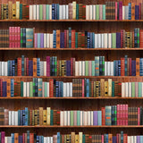 6739 Library Bookcase Backdrop - Backdrop Outlet