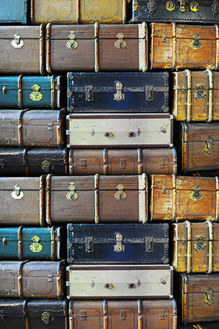 6746 Vintage Suit Cases Printed Photograph Backdrop - Backdrop Outlet