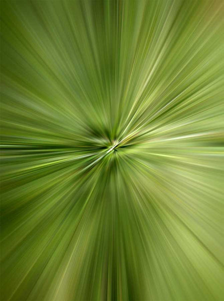 Abstract Radial Burst Green Hue Backdrop - 6778 - Backdrop Outlet