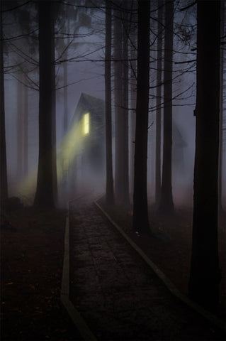 Haunted Forbidden Forest Cabin Printed Backdrop - 6783 - Backdrop Outlet