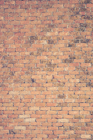 6794 School Brick Wall Printed Backdrop