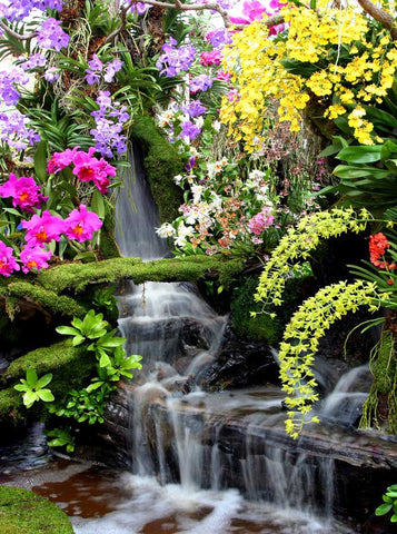 Flowering Waterfall Backdrop - 687 - Backdrop Outlet