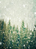 Christmas Trees In Snowfall Backdrop - 6904