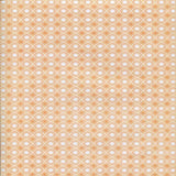 Coral Pattern Backdrop - 7281 - Backdrop Outlet