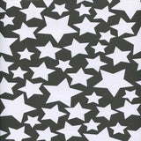 Silver Stars Backdrop - 7347 - Backdrop Outlet