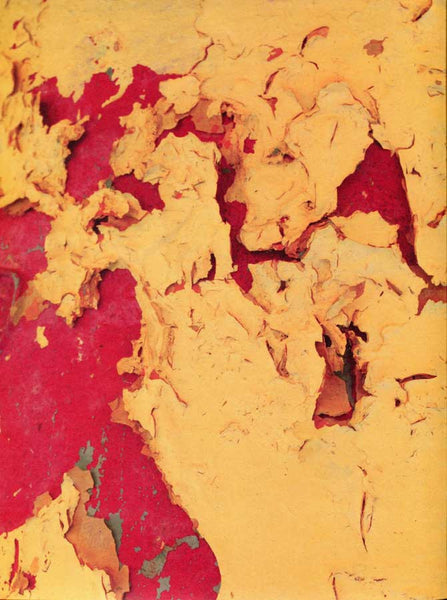 Abstract Mustard Crackle Wall - 7384 - Backdrop Outlet