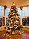 7817 Christmas Tree Large  Windows Backdrop - Backdrop Outlet