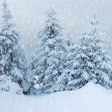Printed Christmas Snow Covered wonderland Photo Backdrop - 7897 - Backdrop Outlet