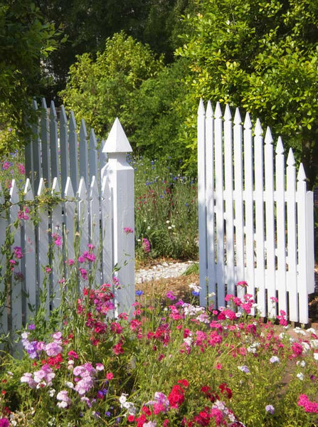 798 White Garden Gates Backdrop - Backdrop Outlet