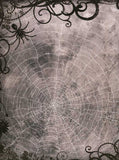 Halloween Spider Web Backdrop - 8063 - Backdrop Outlet