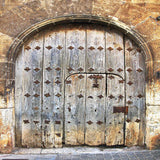 Medieval Blue Door Backdrop - 8078 - Backdrop Outlet